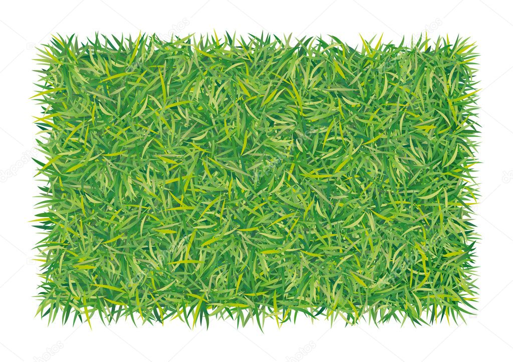 Rectangle of grass