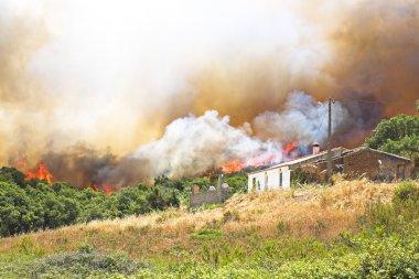 büyük orman yangını Portekiz evleri tehdit ediyor.
