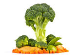 strom modelu z čerstvé zeleniny