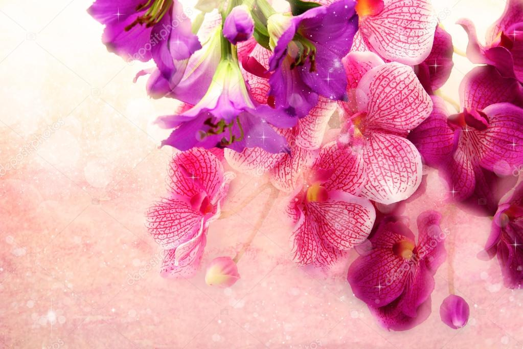 charming bouquet orchids on a pink background