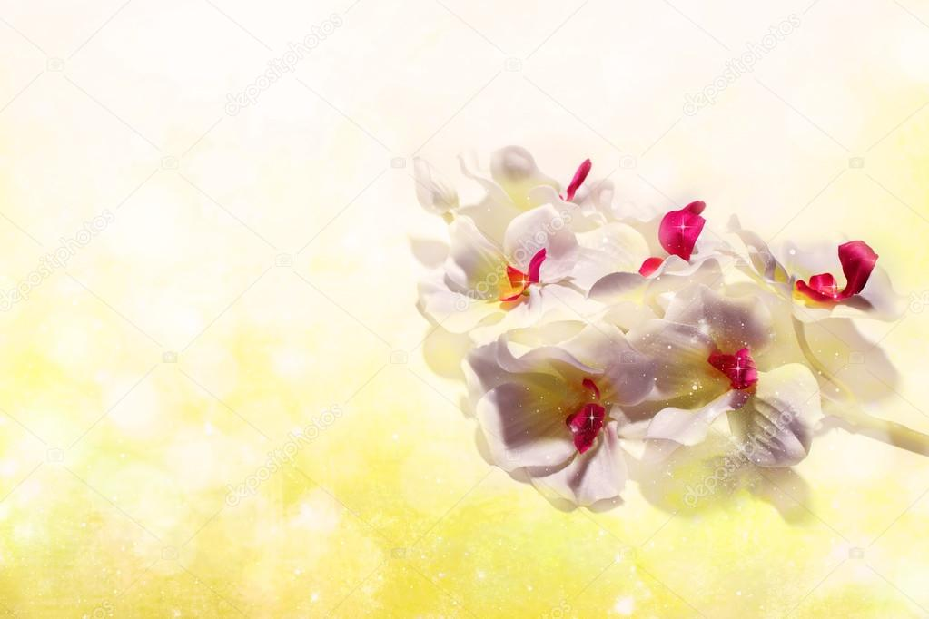 cute white orchids on a sunny shiny yellow background