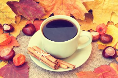 Hot cup of coffee on an autumn background