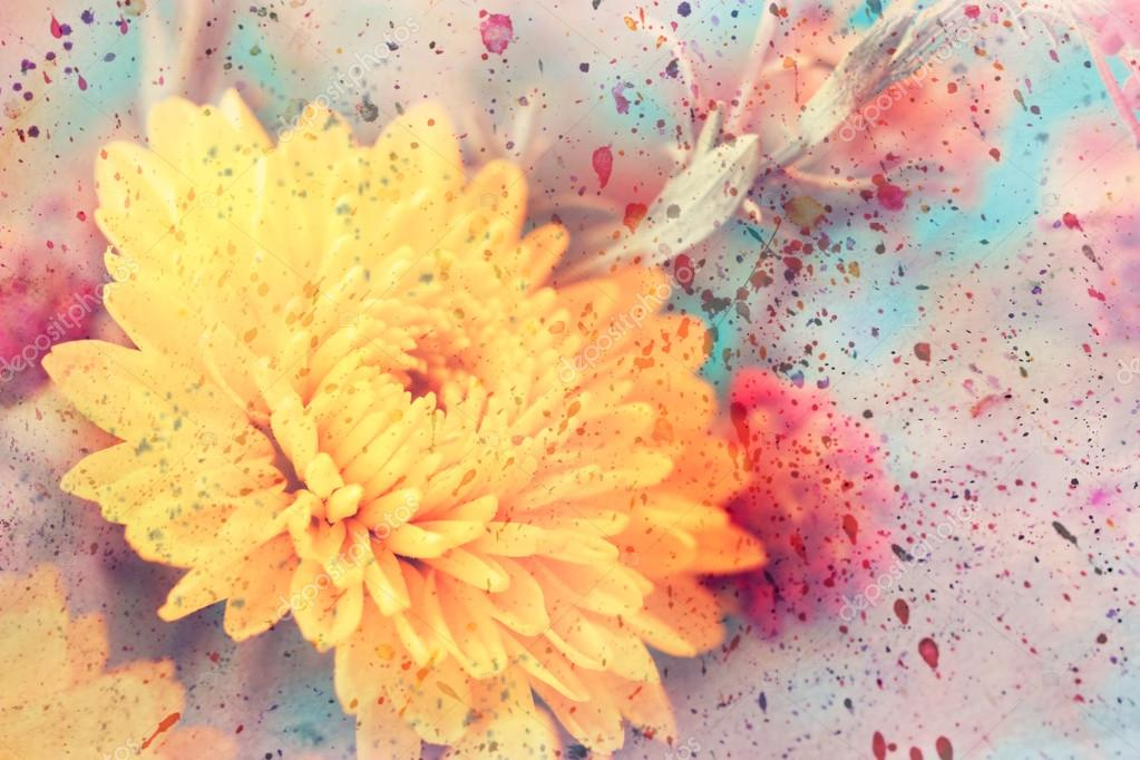 Artwork with delicate yellow aster flower close up and watercolor splashes
