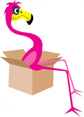 Flamingo sitting in a moving box