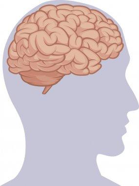Human Body Part - Brain Inside Head Silhouette