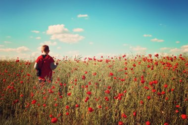 Little boy in the poppy field