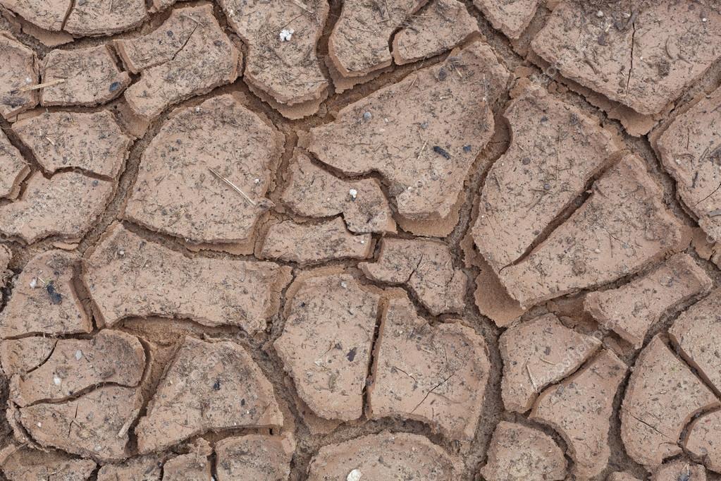 Cracks in dry soil.