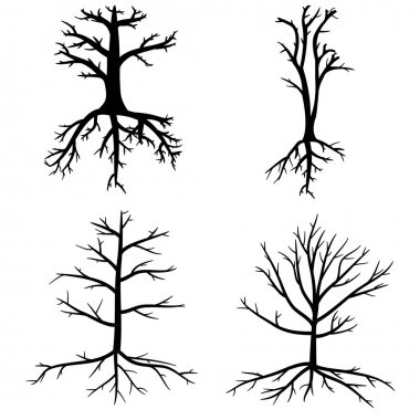 Trees with dead branches and roots