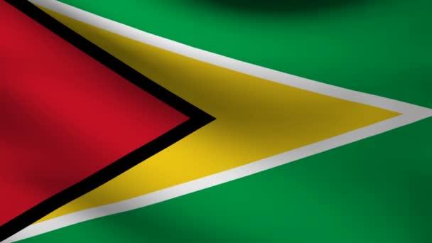 Guyana flag.