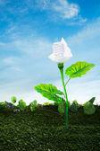 ekologické energetické koncepce