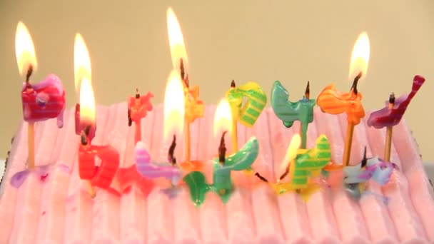 narozeninové svíčky na dort