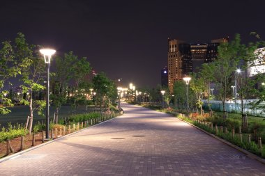 beautiful garden walkway with lamps at night