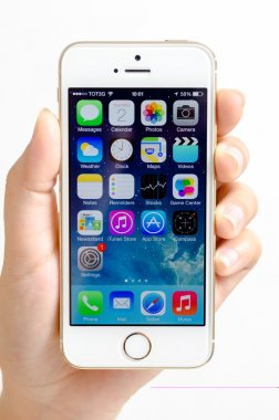 Hand holding gold iphone 5s