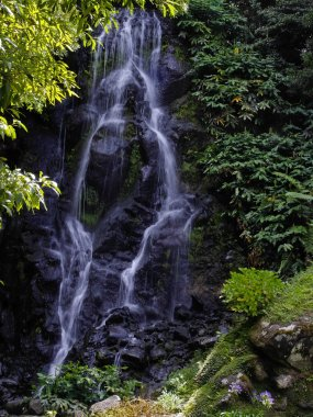 The waterfall of Achada ,Sao Miguel Island, Azores