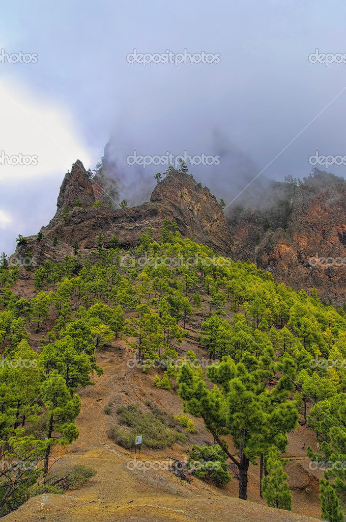 La Palma island, Caldera Taburiente,Canary, Spain