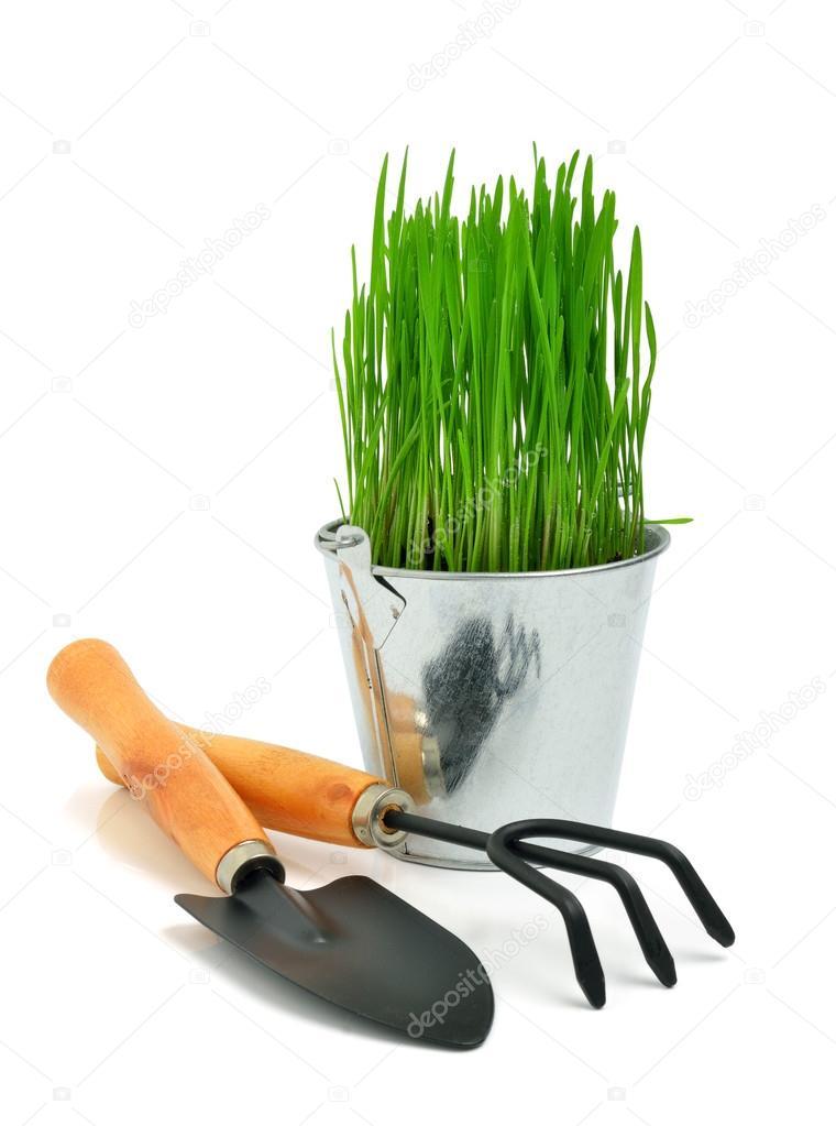 Shovel, aluminium bucket with grass, rake garden tools