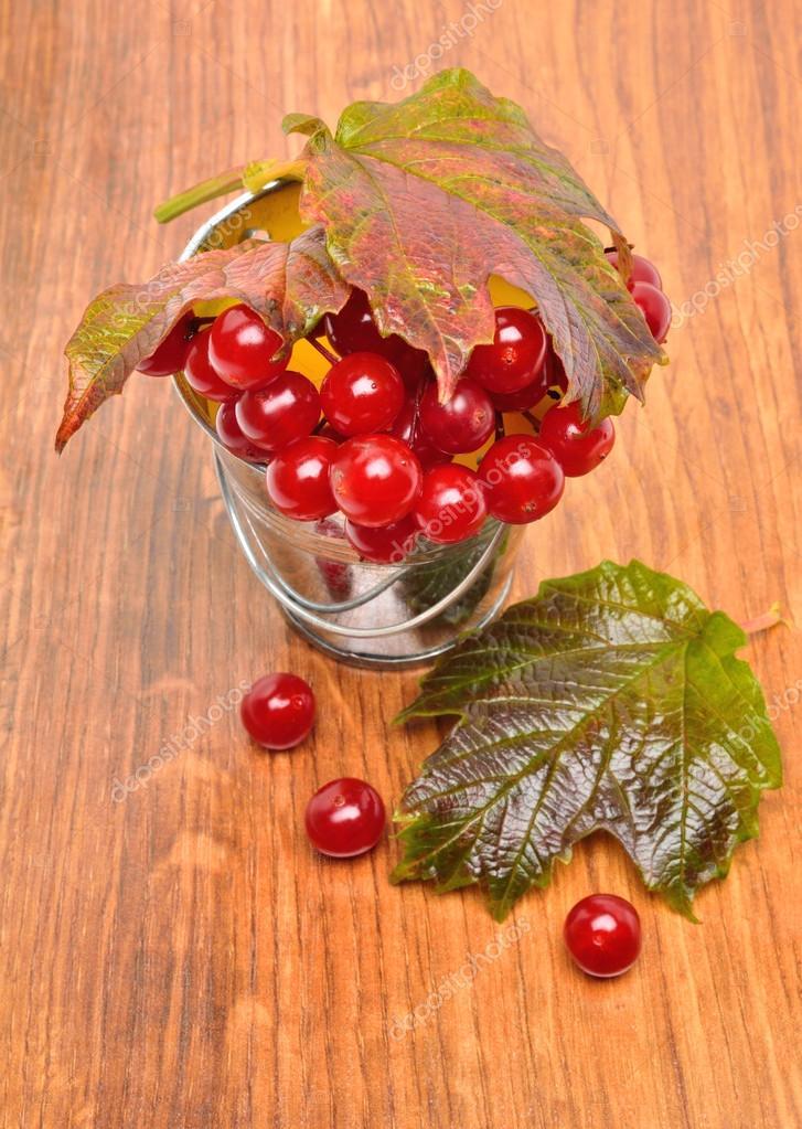 Red viburnum berries in the glass
