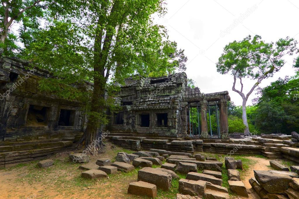 Prasat Ta Prum. Tree and Stones.