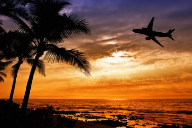 Tropical sunset with palm tree and airplane silhouettes