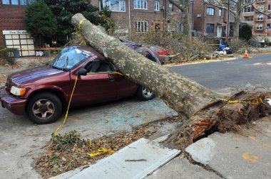 Hurricane Sandy in Brooklyn, New York, U.S.