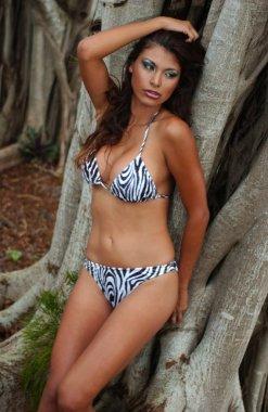 Outdoor portrait of a young beautiful African American girl wearing zebra animal print bikini