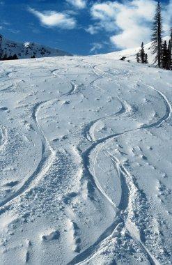 First Tucks at Snowbasin Ski Resort, UTAH