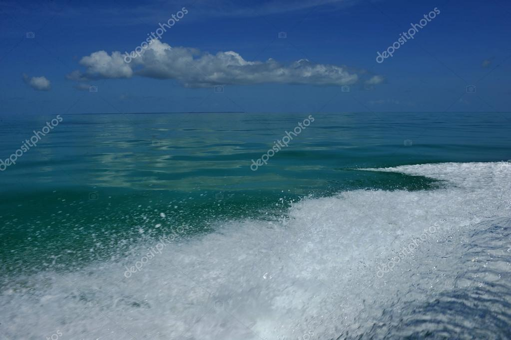 Wave from motor on tropical water