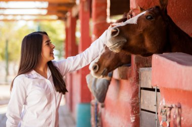 Girl petting couple of horses in the stables