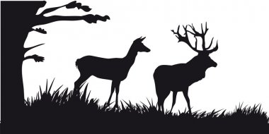 Deer with deer grazing in the forest - black and white silhouette