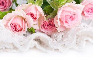 Beautiful roses in retro style
