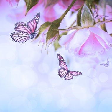 """Картина, постер, плакат, фотообои """"beautiful roses and butterfly, flower, floral background"""", артикул 34193615"""