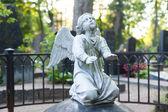Fényképek angyal szobor