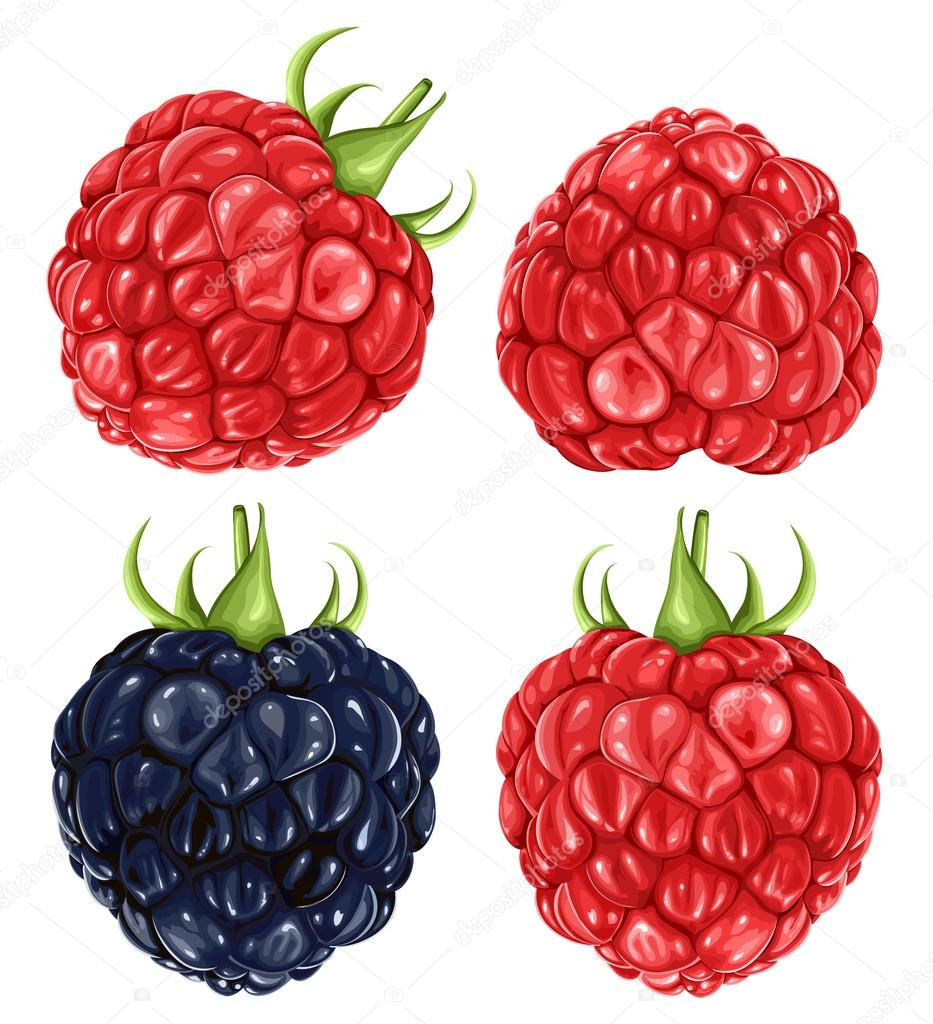 Raspberries & blackberry