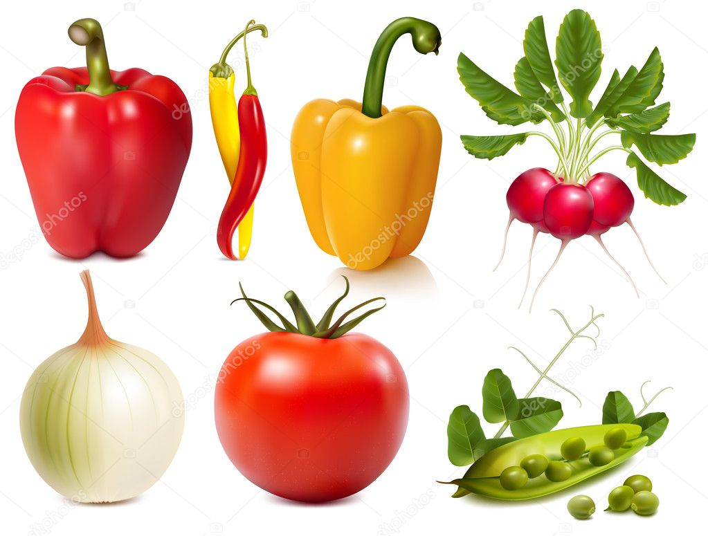 Collection of vector vegetables