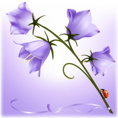 Postcard. Bluebell with ladybug. stock vector