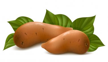 Sweet potato with leaves.