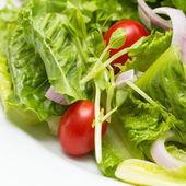 Salat aus frischem Gemüse