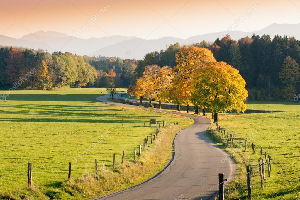 Winding Country Road through autumnal Landscape