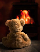 Teddy od ohně