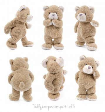 Isolated teddy bear in different positions or emotions