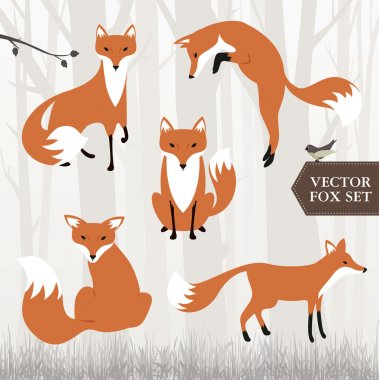 Different fox drawings