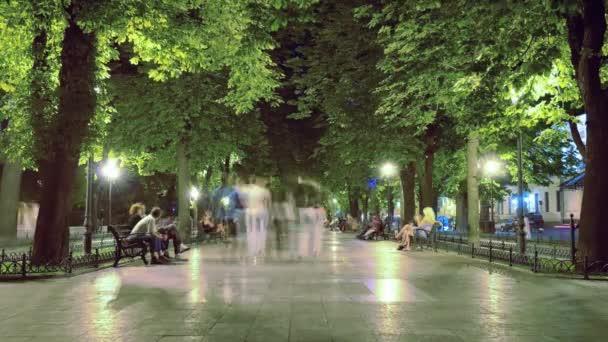 Zeitraffer-Spaziergang über den Boulevard in der Nacht