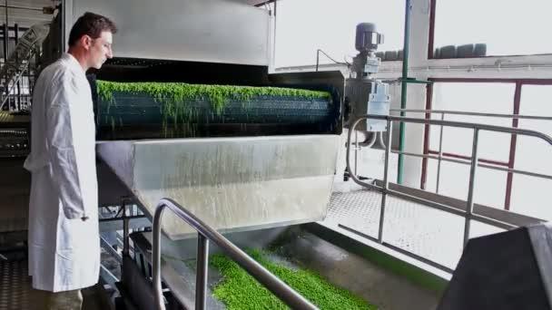 Arbeiter in der Lebensmittelindustrie