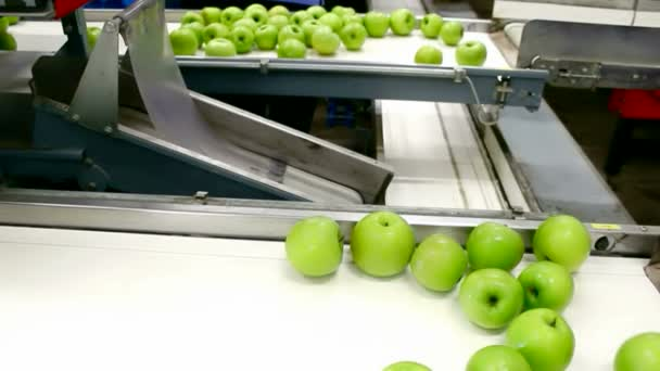Apples in a Packing Plant