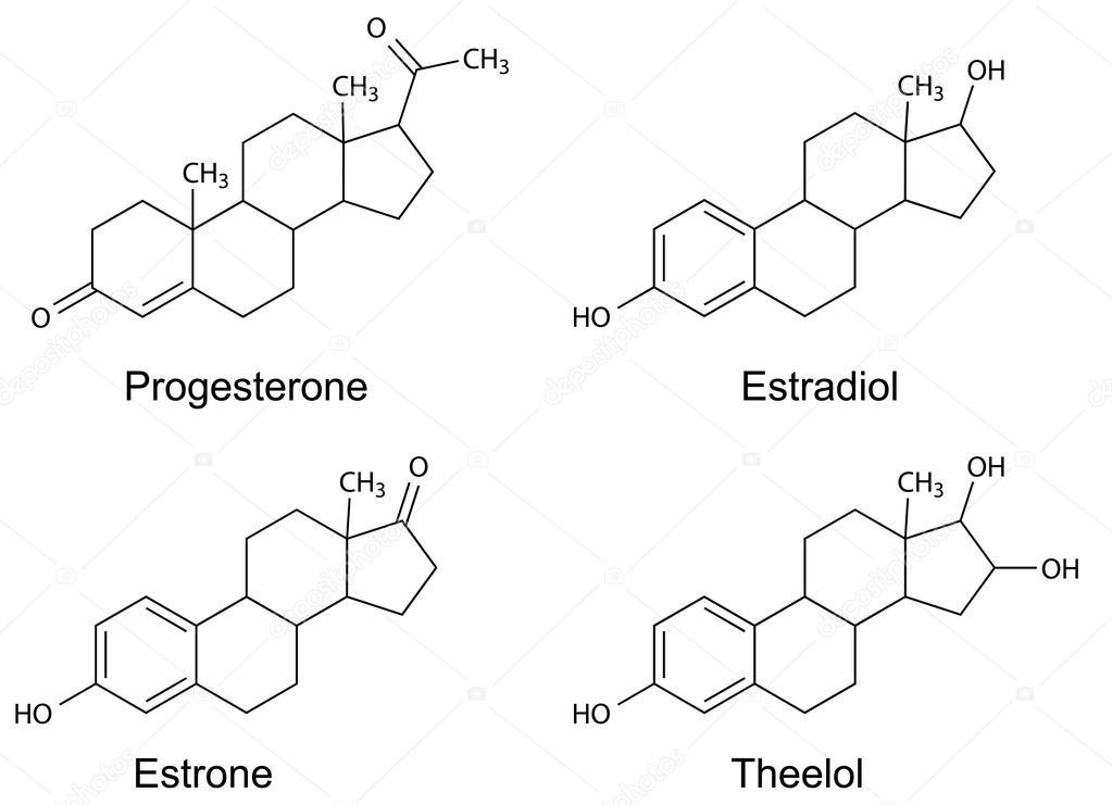 Weiblichen sexualhormone