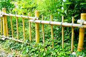 Fotografie fense bambus