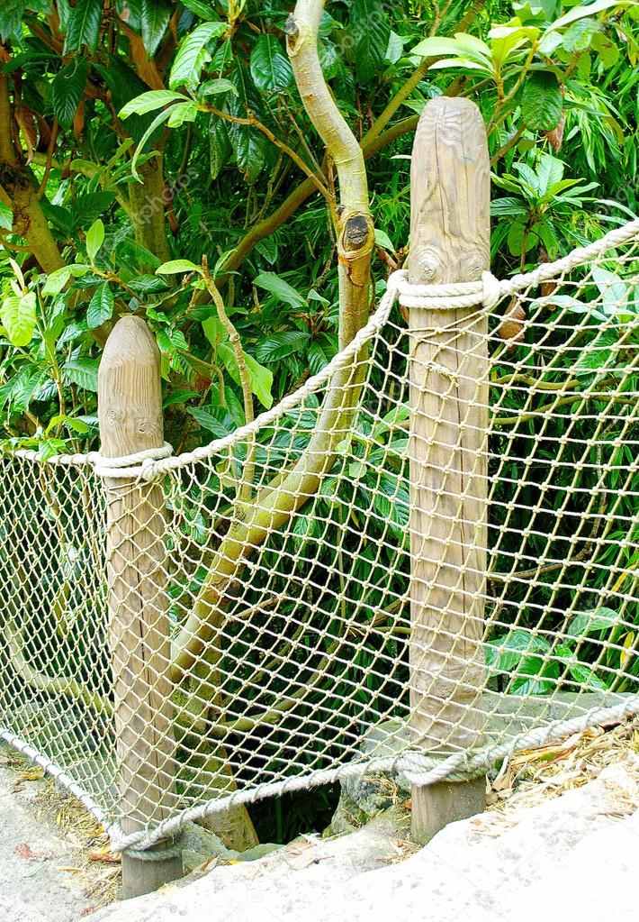 Net of the bridge