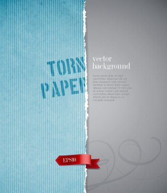 Vector torn paper background