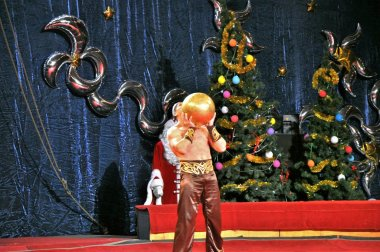 Artists of Yuri Nikulin Moscow Circus
