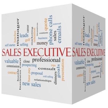 Sales Executive 3D cube Word Cloud Concept